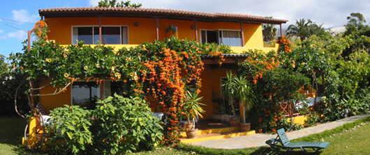 La Palma Studios Ein Studio Auf La Palma Finca Tropical Studio